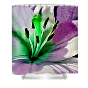 Glowing Lily Heart  Shower Curtain