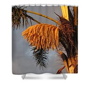 Glowing Palm Blossoms Shower Curtain