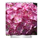 Glowing Pink Hydrangea Shower Curtain