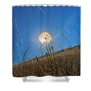 Glowing Summer Shower Curtain