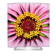 Glowing Zinnia By Kaye Menner Shower Curtain