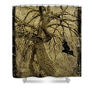 Gnarled And Twisted Tree With Crow Shower Curtain