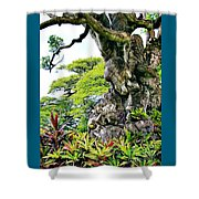 Gnarled Tree  Shower Curtain