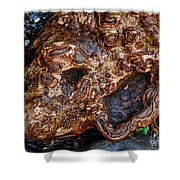 Gnarly Roots  Shower Curtain