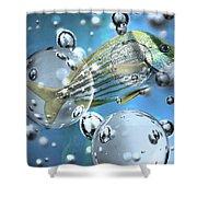 Go Fish Shower Curtain