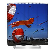 Go Fly A Kite 1 Shower Curtain