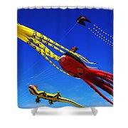 Go Fly A Kite 7 Shower Curtain