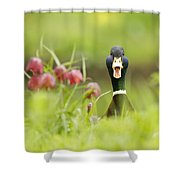 Go Home Duck You're Drunk Shower Curtain