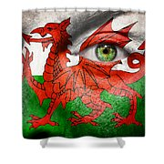 Go Wales Shower Curtain