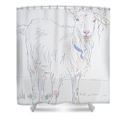Goat Drawing Shower Curtain
