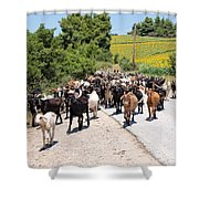 Goat Herd Shower Curtain