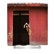 Goat In Barn Shower Curtain