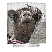 Gobi Desert- Mongolia Shower Curtain
