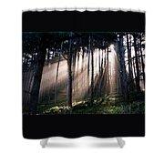 God Light Shower Curtain