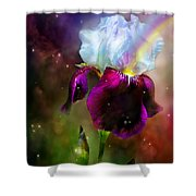 Goddess Of The Rainbow Shower Curtain