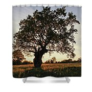 Goddess Tree 2 Shower Curtain