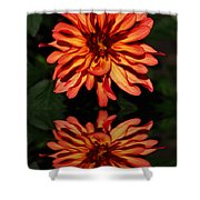 Godess Reflected Shower Curtain