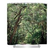 God's Canopy Shower Curtain