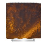 Gods Canvas Shower Curtain
