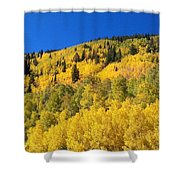 Going Gold Shower Curtain