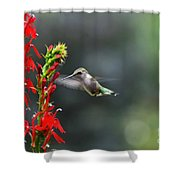 Going In For Seconds Shower Curtain