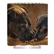 Going Nose To Nose Shower Curtain
