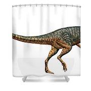 Gojirasaurus Dinosaur Shower Curtain