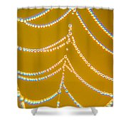 Gold And Diamonds Shower Curtain