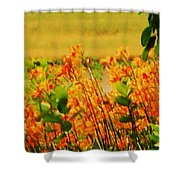 Gold And Orange Landscape Shower Curtain