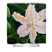 Gold Band Lily Shower Curtain