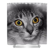Gold Eyes Shower Curtain