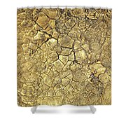 Gold Fever 1 Shower Curtain