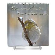 Gold Finch On A Snowy Twig With Verse Shower Curtain