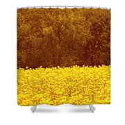 Gold N Brown Shower Curtain