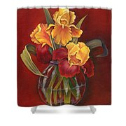Gold N Red Iris Shower Curtain