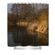Golden Afternoon Reflections Shower Curtain