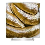 Golden Art Shower Curtain