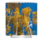 Golden Aspen Stand Shower Curtain