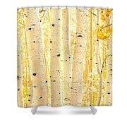 Golden Aspens Utah Shower Curtain