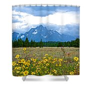 Golden Asters And Tetons From The Road In Grand Teton National Park-wyoming Shower Curtain