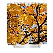 Golden Autumn - Featured 3 Shower Curtain