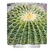 Golden Ball Cactus Shower Curtain