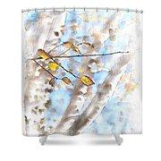 Golden Birch Shower Curtain