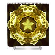 Golden Buddha Star Shower Curtain