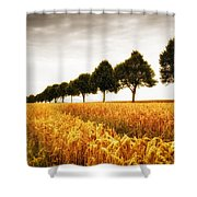Golden Cornfield And Row Of Trees Shower Curtain