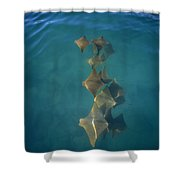 Golden Cownose Rays Schooling Galapagos Shower Curtain