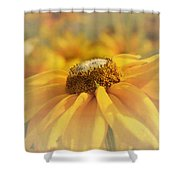 Golden Crown - Rudbeckia Flower Shower Curtain