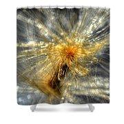 Golden Dream Shower Curtain