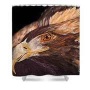 Golden Eagle Close Up Painting By Carolyn Bennett Shower Curtain