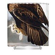 Golden Eagle Shower Curtain by John James Audubon